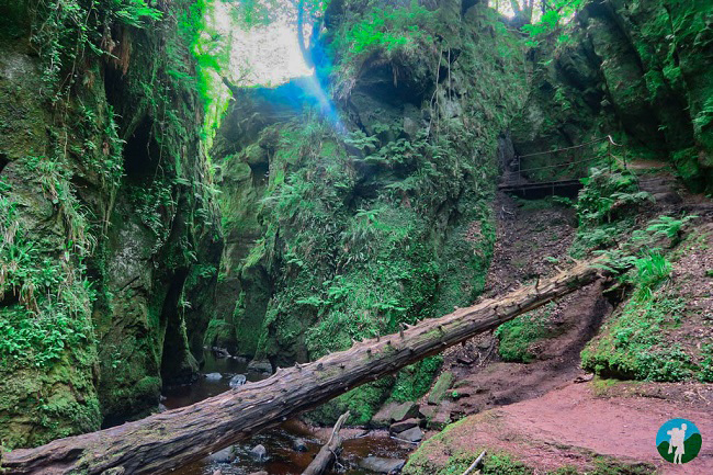 glen fiddich devil's pulpit scotland