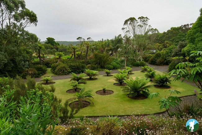 southern scotland itinerary logan botanic gardens