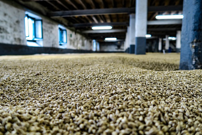 malting floor laphroaig whisky 2018