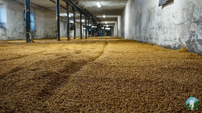 malting barley floor highland park distillery