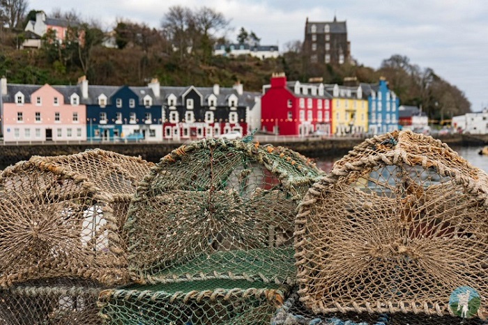 tobermory things to do on mull