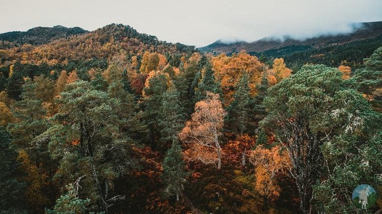 coire loch autumn